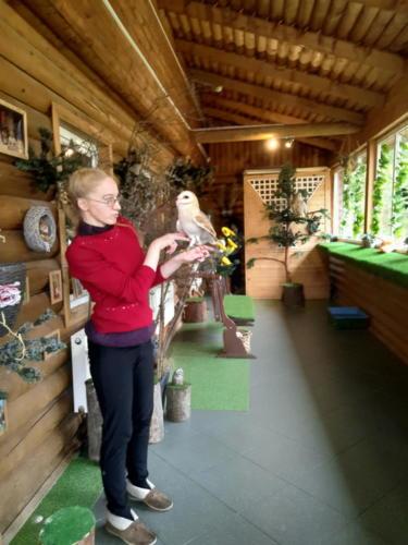 Музей совушек «ФилоСовия»